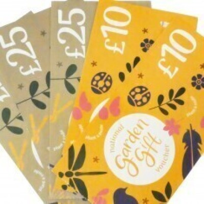 Shop Store Cards & Gift Vouchers